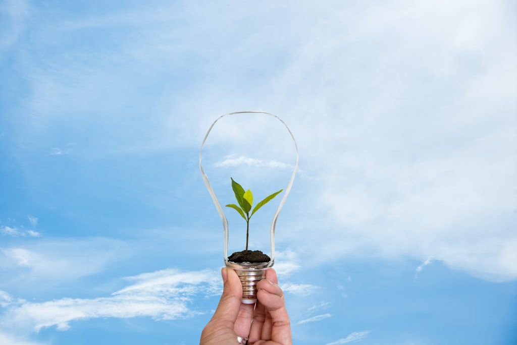 Hand holding on light bulb with green plant inside for saving earth, nature blue sky background. Idea environmental conservation Concept